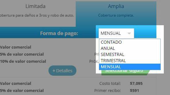 Selección de período de pagos - mensual,semestral o anual - traigoseguro.com